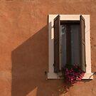 Open window by Rob Schoon