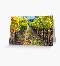 Vineyard Light Greeting Card