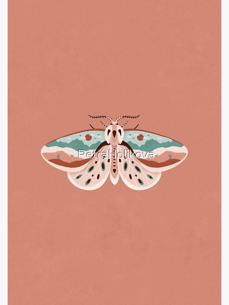 Desert Moth by PetraHolikova