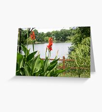 down by the pond Greeting Card