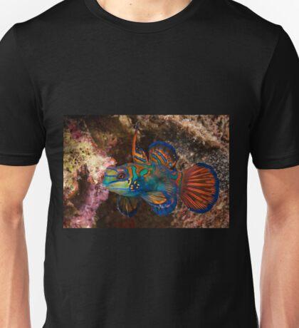 Mandarin Fish, Wakatobi National Park, Indonesia T-Shirt