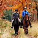 Going on a late autumnal ride by jchanders