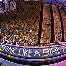Think Like a Bird Flies #1 by Guy Carpenter