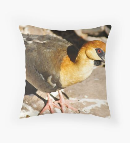 Awesome Ibis! Throw Pillow