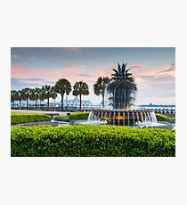 Charleston South Carolina Pineapple Fountain Downtown Waterfront Park Photographic Print