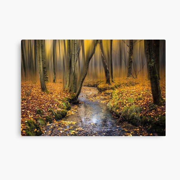 Autmn Woodland Stream Canvas Print
