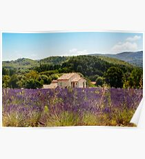 provence Poster