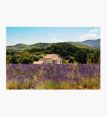 provence Photographic Print