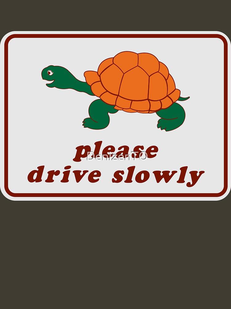 Please Drive Slowly by DenizenTO