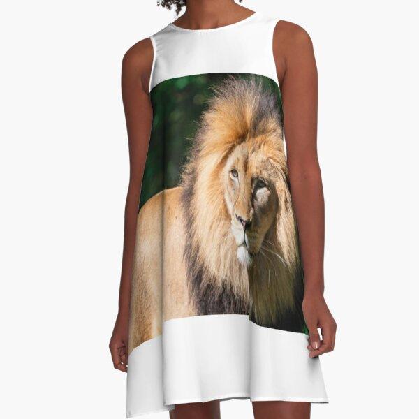 Máscara De Animales De La Selva León realista Bestia Africa India Vestido de fantasía