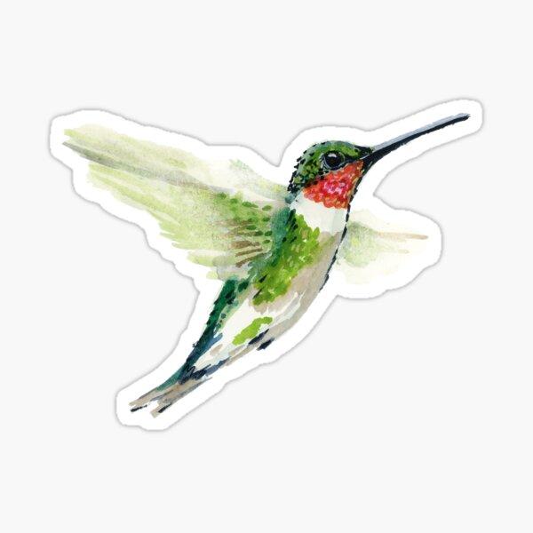 Ruby Throated Humming Bird Sticker