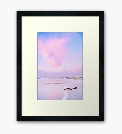 Sunset Kelp Framed Print