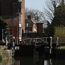 Newbury Lock by Samantha Higgs