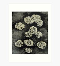 Lithography Art Print