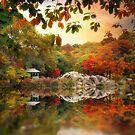 Autumn at Hernshead 2 by Jessica Jenney