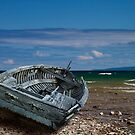 Boat shipwrecked on a Lake Michigan Shore by Randall Nyhof