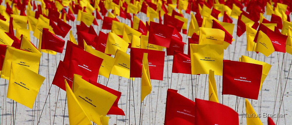 Flags by Marius Brecher