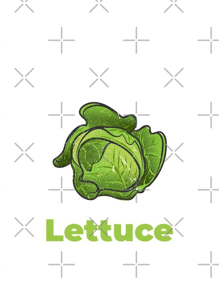 Lettuce Vegetable with Name by nikkihstokes