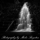 In Black and White by Mieke Boynton