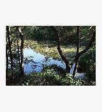 Lake Ray Photographic Print