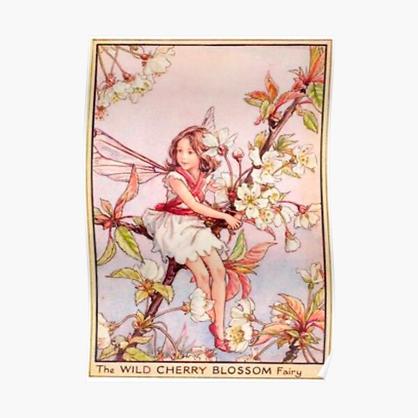 """""""The Wild Cherry Blossom Fairy"""" by Cicely Mary Barker  Poster"""