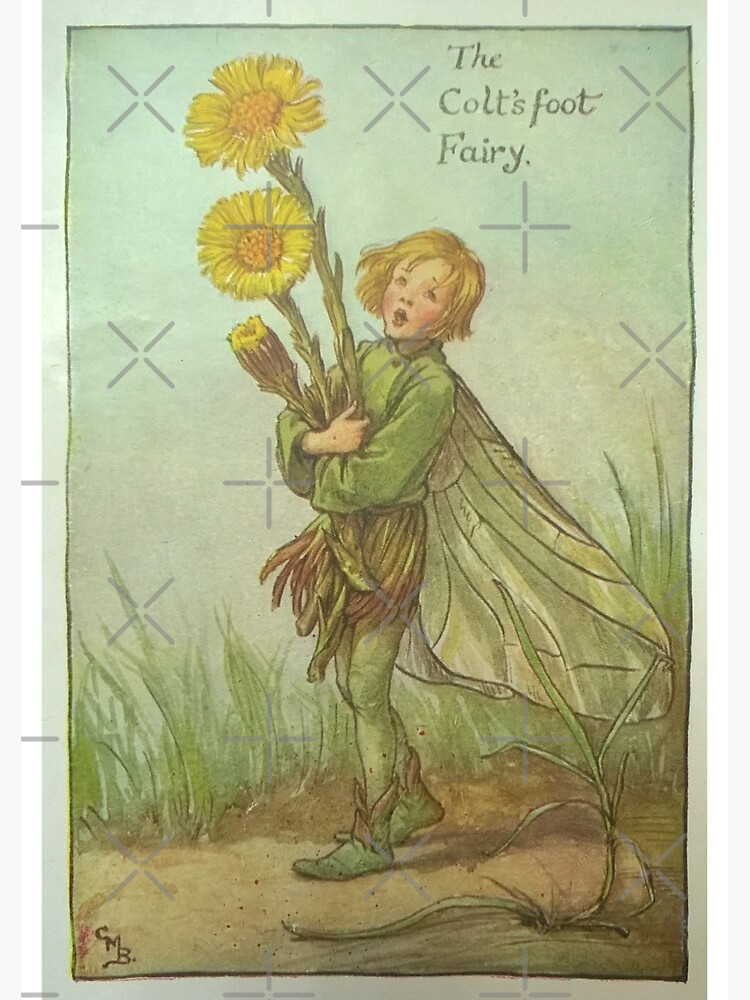 """""""The Colt's Foot Fairy"""" by Cicely Mary Barker  by SistarSprkls"""