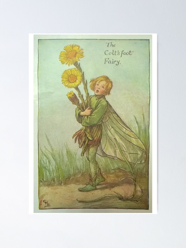 """Alternate view of """"The Colt's Foot Fairy"""" by Cicely Mary Barker  Poster"""
