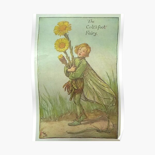 """""""The Colt's Foot Fairy"""" by Cicely Mary Barker  Poster"""