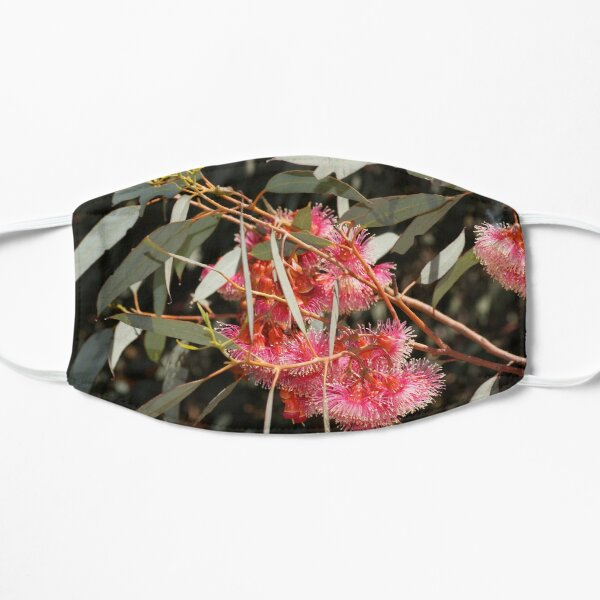 Pink Flowering Gum  by Avril Thomas, South Australian artist  Mask
