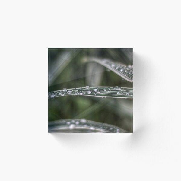 Raindrops Acrylic Block