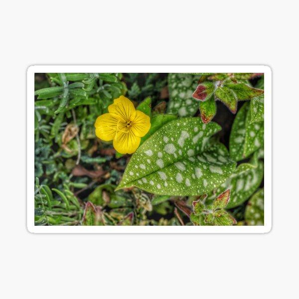 Nature composition Sticker