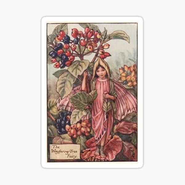 """The Wayfaring Tree Fairy"" by Cicely Mary Barker  Sticker"