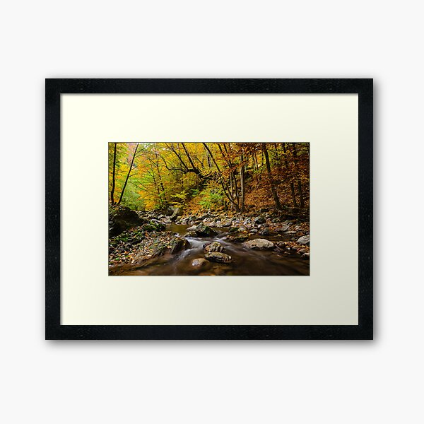 Autumn is coming 1 Framed Art Print