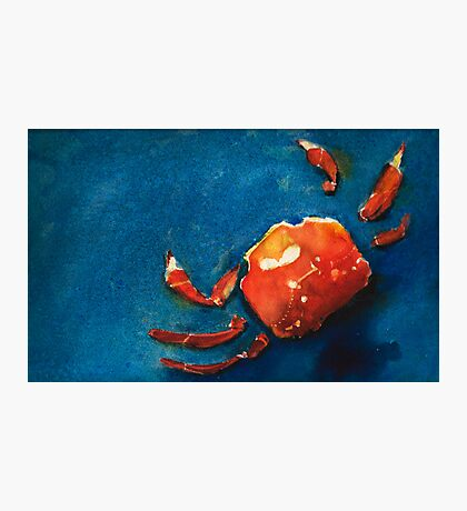 I'm Crabby Photographic Print