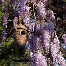 Birdhouse In The Wisteria by Gabrielle  Lees