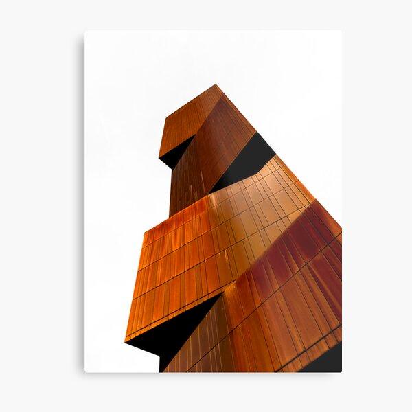 Totemic Metal Print