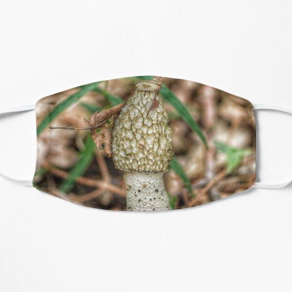 Mushroom Mask