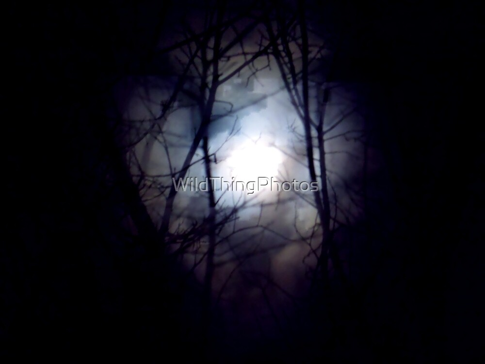 Witch's Moon by WildThingPhotos