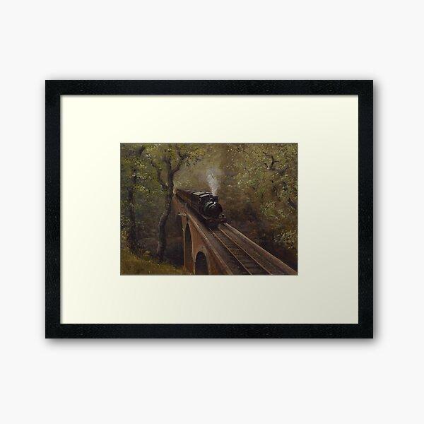 Dolgoch Viaduct Framed Art Print