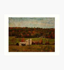 Cultivated Farm Art Print
