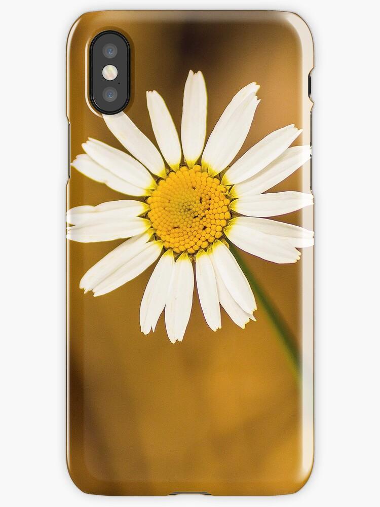 Daisy phone case by John Velocci