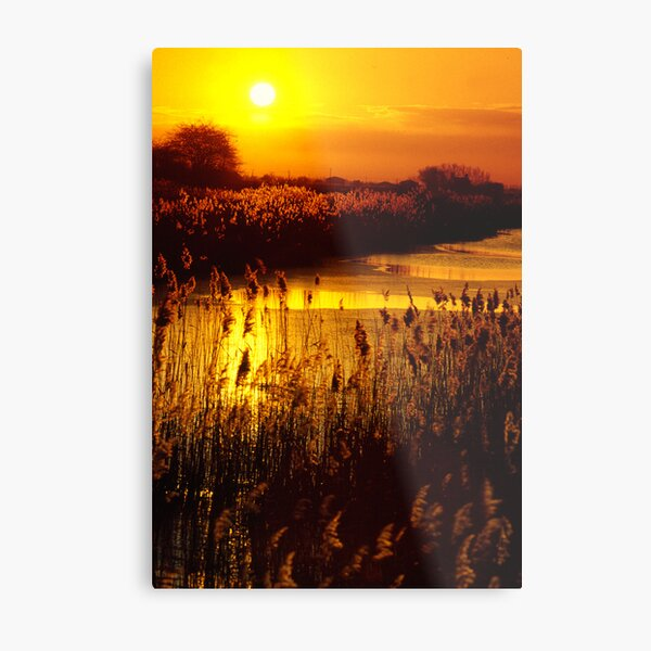 Sunset over the fens. Metal Print