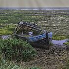 Old Wreck by Nigel Bangert