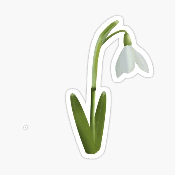 Little Snowdrop  Sticker