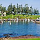 Kiama Harbour by Dilshara Hill