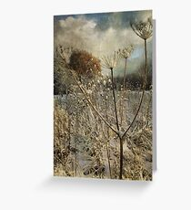Winter in the Meadow Greeting Card