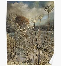 Winter in the Meadow Poster