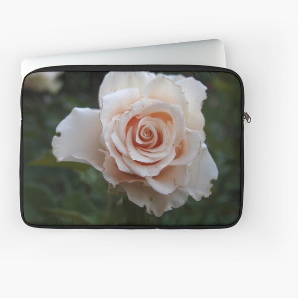 Sicilian Rose from A Gardener's Notebook Laptop Sleeve