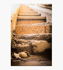 Steps to the shine Photographic Print