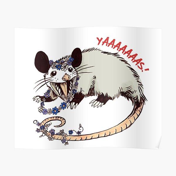 Daisy Chain Opossum Possum Yaaaas! Poster